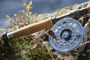 Fishing rod and reel - close-up